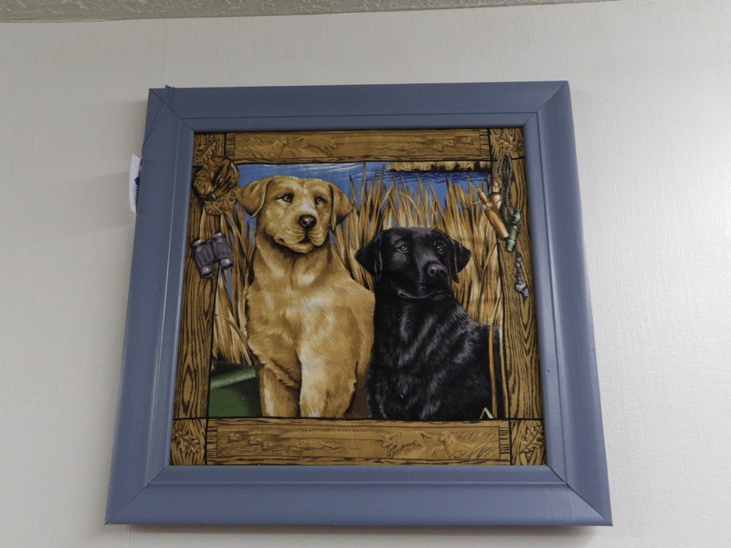 Double Cloth Lab - Framed Art